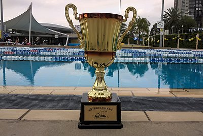 A fantastic meet from our whole team at the Parramatta Inter-Club on Saturday at Merrylands Swimming Centre.